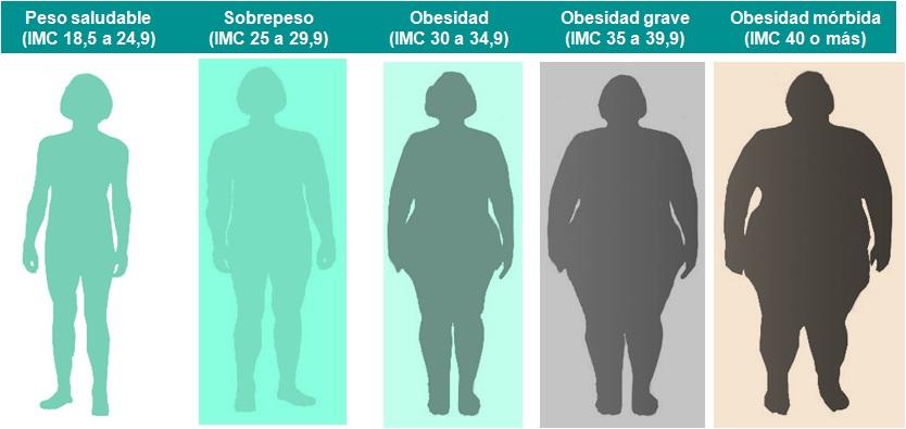 rangos de IMC saludable, sobrepeso, obesidad normal, obesidad grave y obesidad mórbida